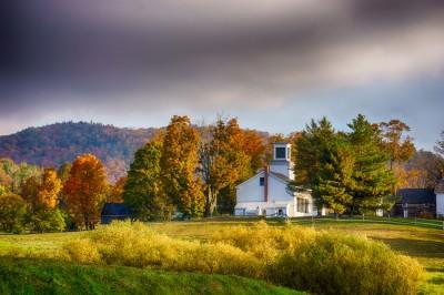 Plymouth-Foliage