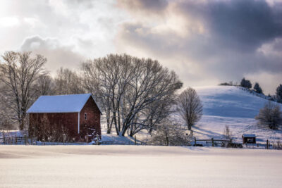 Winter-Hillside