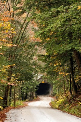 Autumn-Entrance