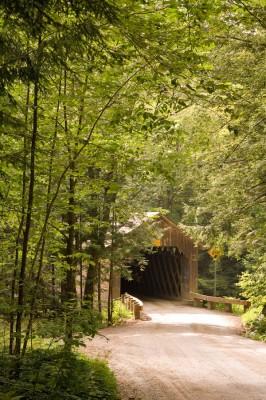 Bridge-Canopy