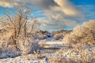 December-Morning