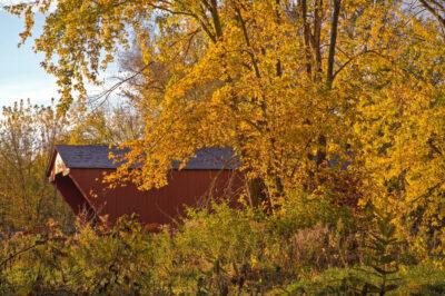 Fall-at-Cooley-Bridge