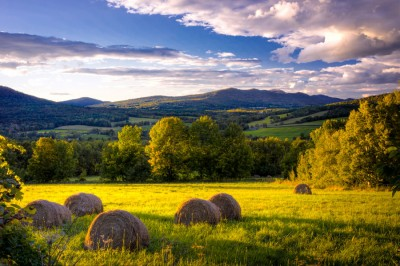 September-Meadow
