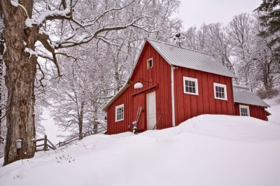 Skier's-Palace