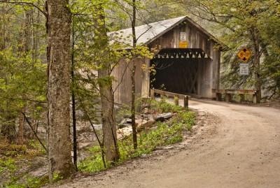 Spring-at-Brown-Bridge