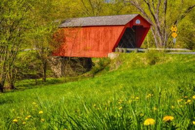 Spring-at-Cooley-Bridge
