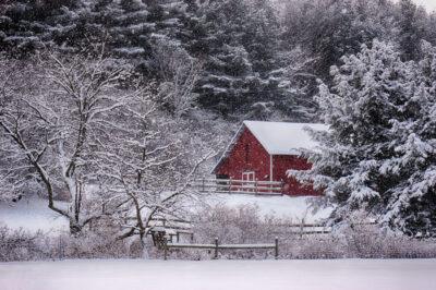 Winter-Barnyard