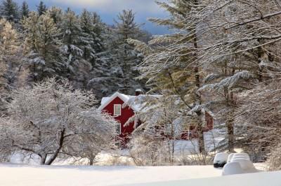 Winter-Homestead