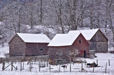 Winter-on-the-Farm