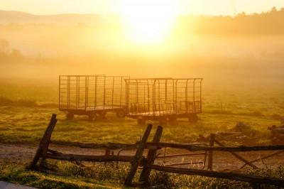Wagons-at-Sunrise