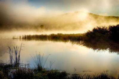 Kent-Pond