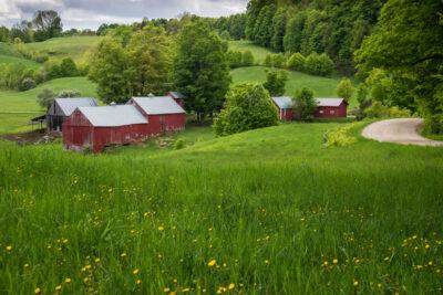 Jenne-Farm-Spring
